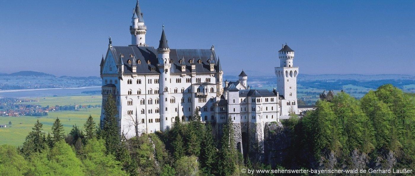Schloss Neuschwanstein - Gruppenhäuser und Ferienhütten im Allgäu
