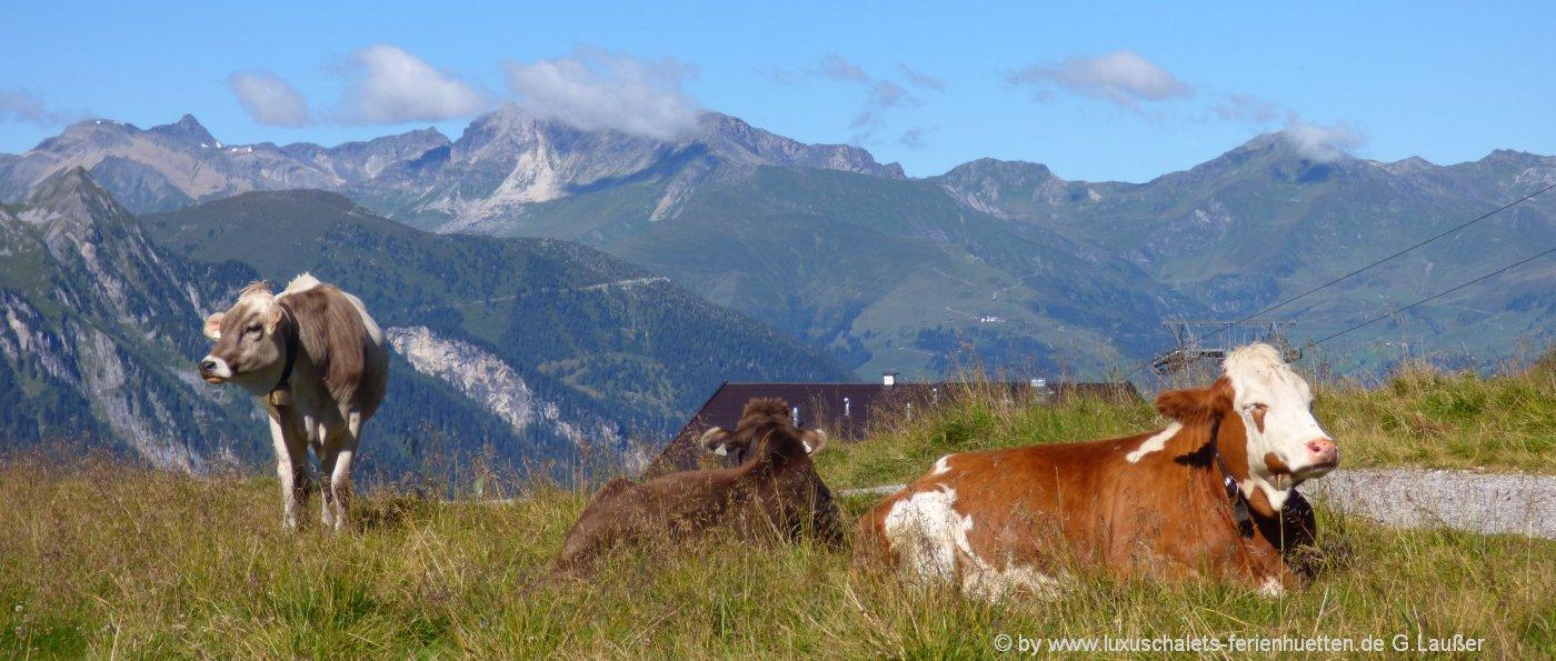 almhütten-vermietung-bayern-berghüttenurlaub-deutschland-berge-alpen