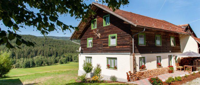 asbachtal-holzferienhaus-bayerischer-wald-bodenmais-aussenansicht