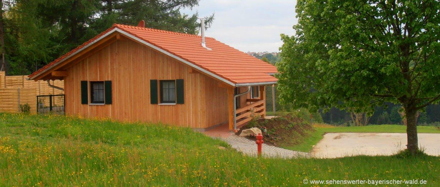 bauer-bayerischer-wald-ferienhaus-mit-hund-und-pferd-bayern