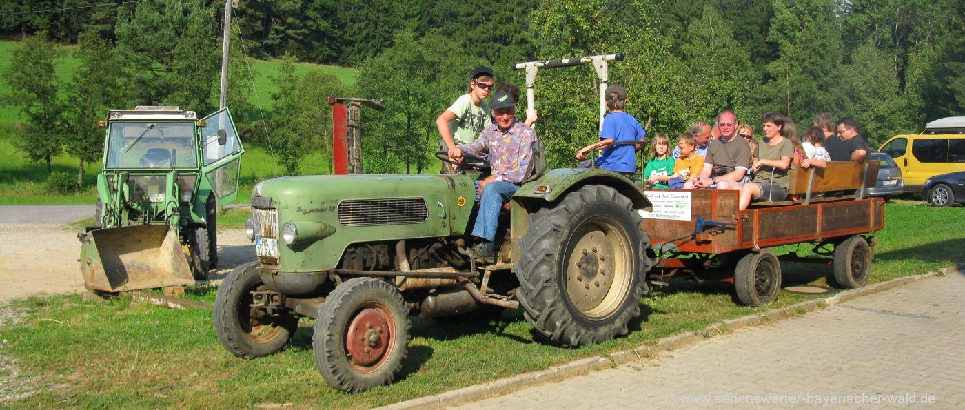 Bayerischer Wald Bauernhof für Gruppen - Traktor Kutschenfahrt