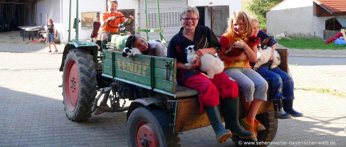 bauernhof-ferienfreizeit-bayern-gruppenfreizeiten-traktor-fahren