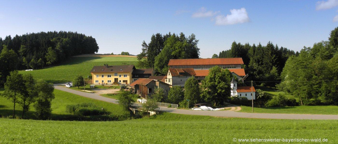 fingermühl-bayerischer-wald-bauernhof-gruppenreise-bayern-hofansicht