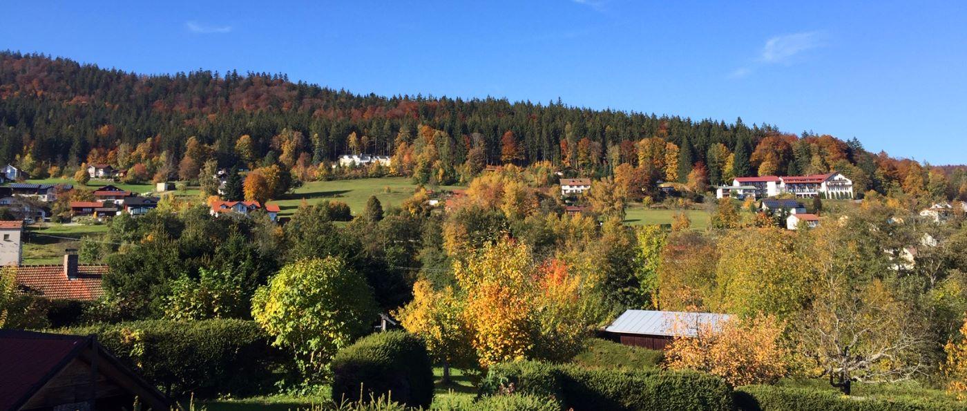 Urlaub in den Wanderurlaub in Zwiesel Chalets & Hütten in Rabenstein