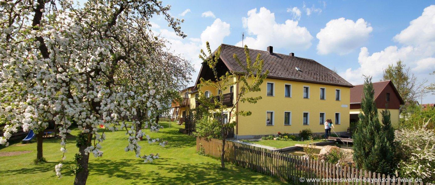 frank-oberpfälzer-wald-bauernhofurlaub-tirschenreuth-ferienhaus