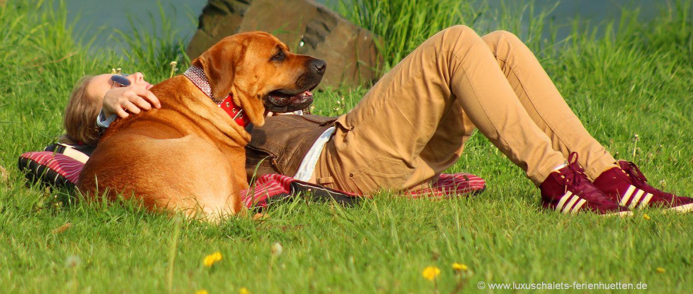 deutschland-hüttenurlaub-mit-hund-chalets-hundefreundlich in Bayern