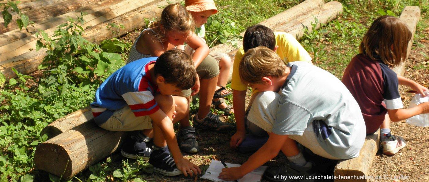 Familien Hütten in Bayern Kinder Erlebnis Hüttenurlaub