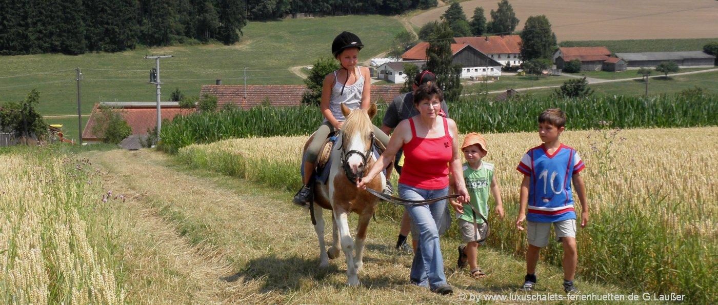 reiturlaub-bayern-ponyreiten-bayerischer-wald-reiterferien