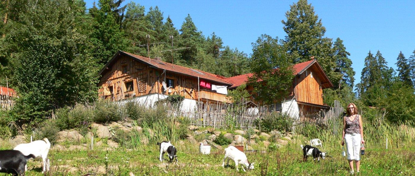 Bayerischer Wald Chalet Ferienhaus in Niederbayern Ansicht