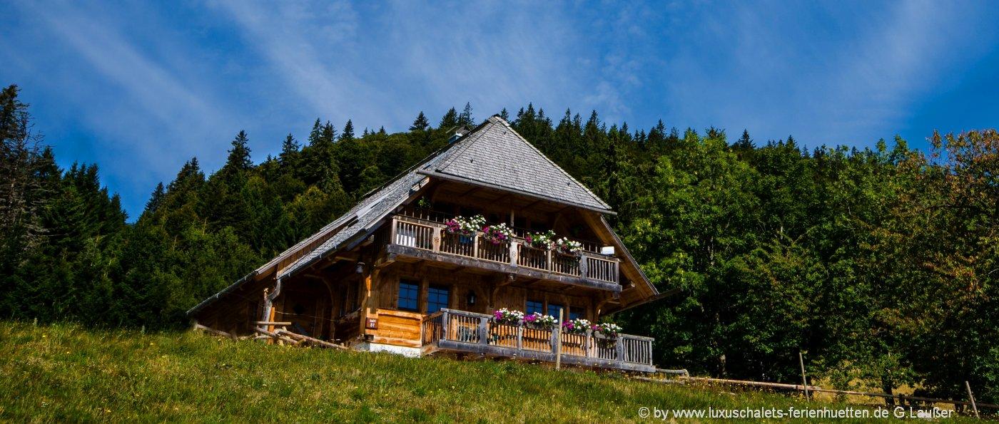 schwarzwald-berghütten-mieten-ferienhütten urlaub