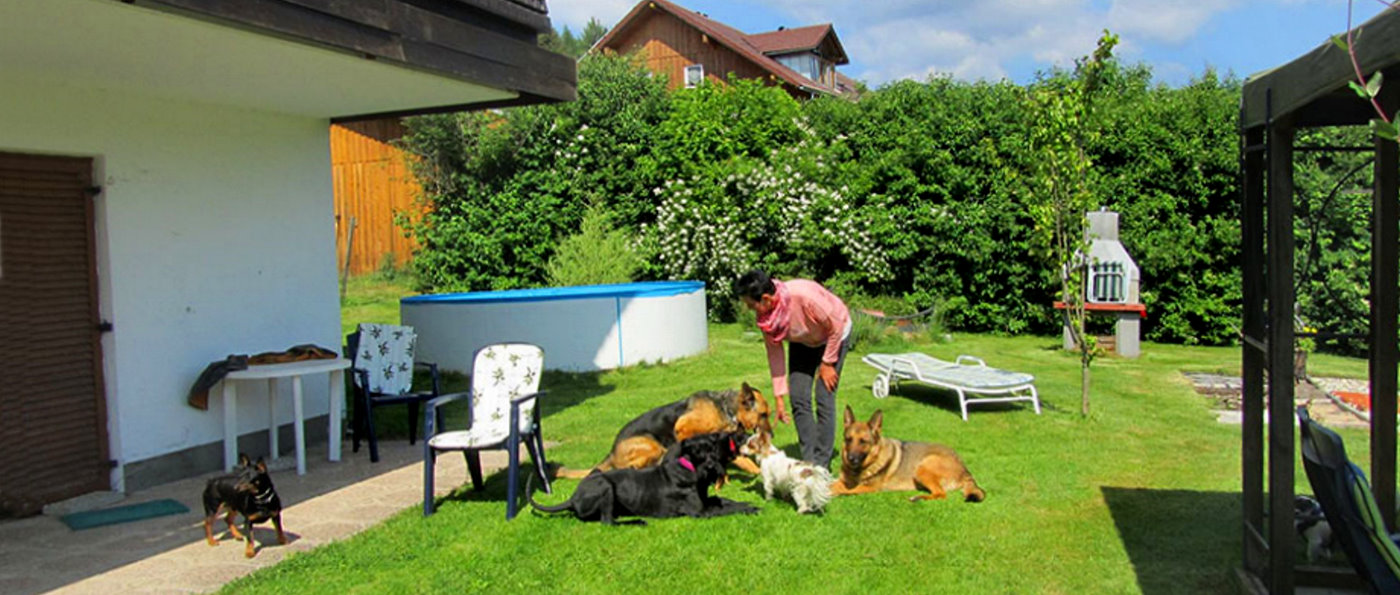 sonnleitn-zwiesel-übernachtung-bayerischer-wald-pension-mit-hund-garten