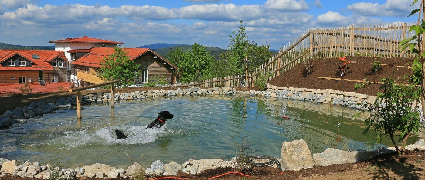 Familienhotel mit Hund in Deutschland Luxushotel mit Badeteich für Hunde