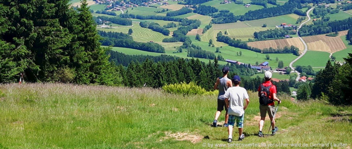 wanderurlaub-bayerischer-wald-huettenwanderungen-bergwandern-aussichtspunkte