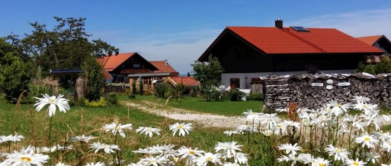 wartner-luxusurlaub-bayerischer-wald-exklusive-chalets-mit-pool